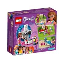 Set de constructie LEGO Friends-Terenul de joaca al hamsterului Oliviei