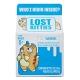 Cutie de lapte cu figurina Lost Kitties - HASBRO
